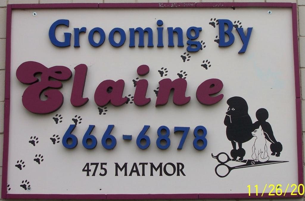 Grooming By Elaine Woodland Ca 95776 530 666 6878