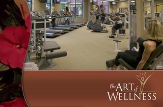 Art Of Wellness - Atlanta, GA