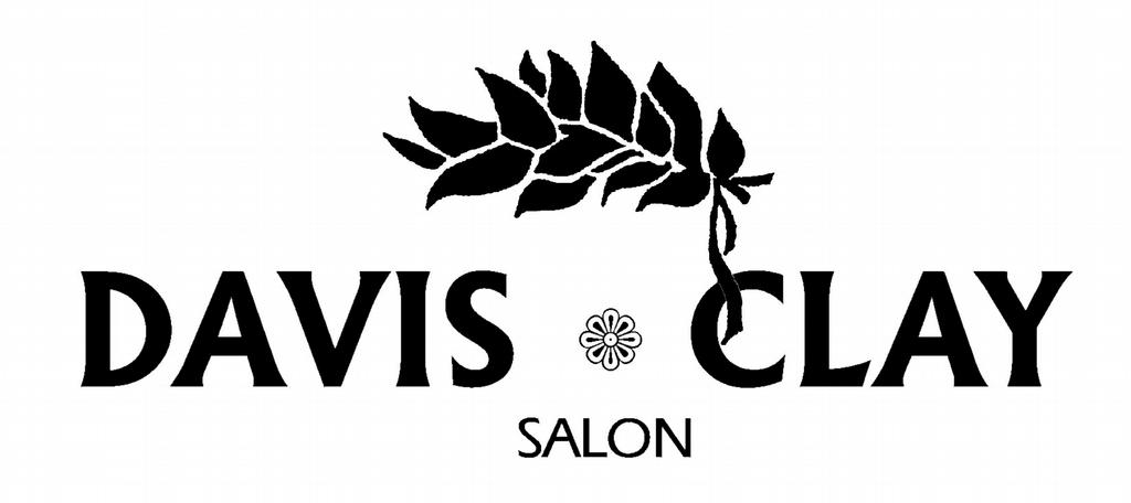 Davis clay salon day spa douglasville ga 30135 770 for A davis brown salon