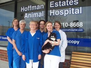 Behm, Sandy, DVM Hoffman Estates Animal Clinic - Barrington, IL