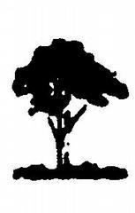 John's Pro Tree Service - Lisle, IL