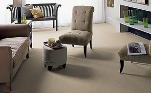 Heaven's Best Carpet Cleaning - Camas, WA