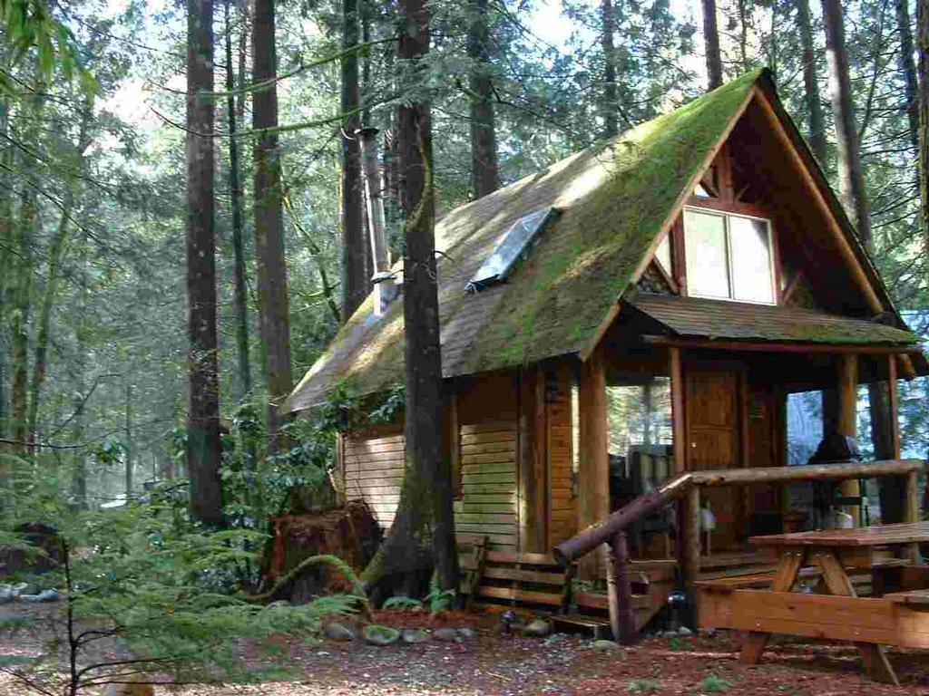 wild lily cabins bed breakfast index wa 98256 360