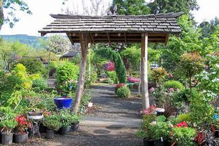 Lael's Moon Garden Nursery - Rochester, WA
