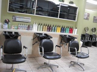Masters Styling Salon - Granger, IN
