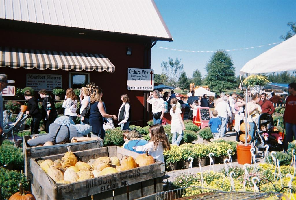 Milburn Orchards Elkton Md 21921 410 398 1349 Food