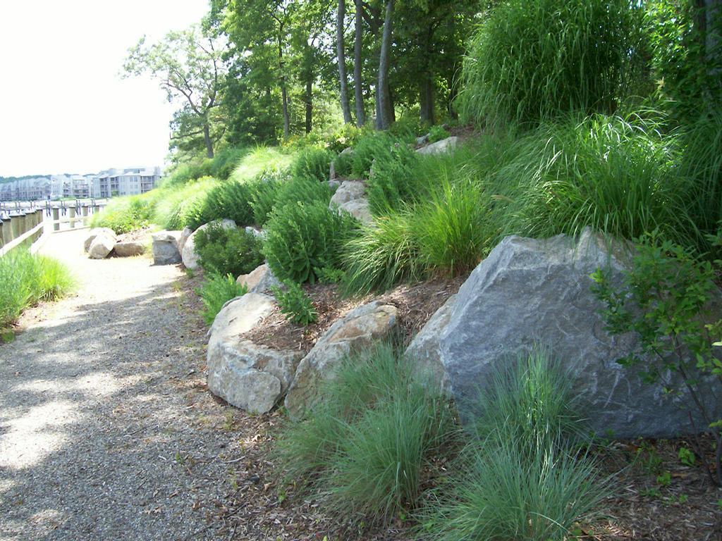 Natural waterfront landscape design maryland contractor for Land design landscaping