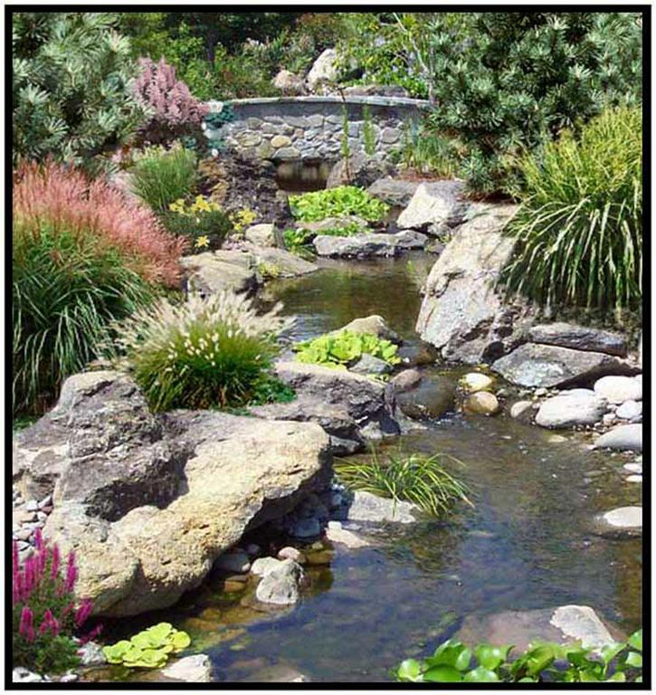 Backyard Ponds Maryland : Water Features in Maryland  Natural Ponds & Streams by Creative Land