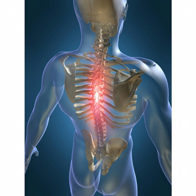 Monroe chiropractic and alternative medicine 8th