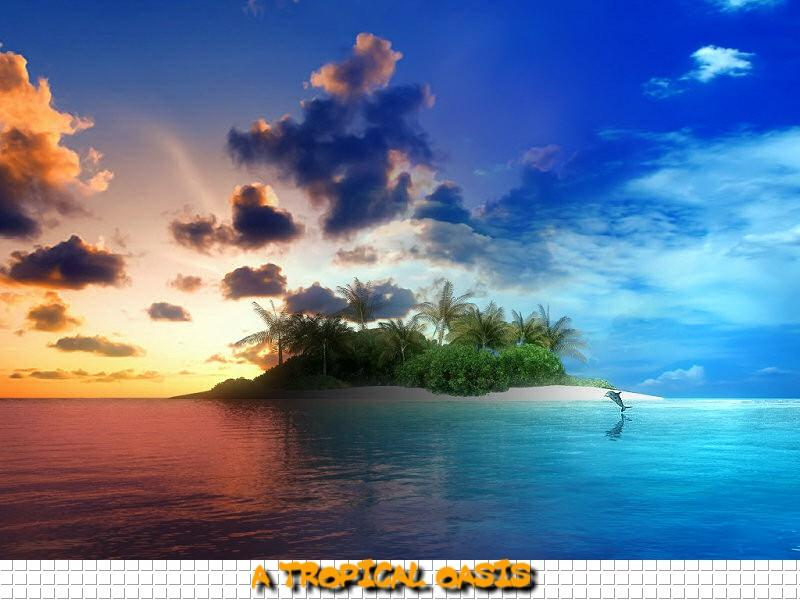 tropical oasis wallpaper image search results