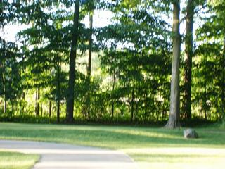 Ledge Meadows Golf Course - Grand Ledge, MI