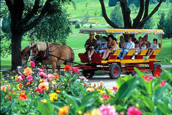 Mackinac Island Carriage Tours Coupons