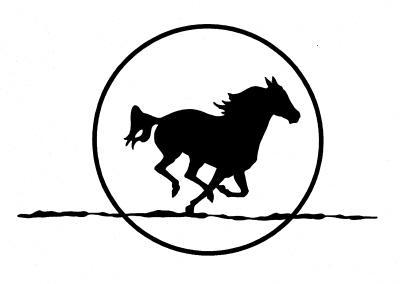 logo horsemoon92007jpg from moonshine equestrian center